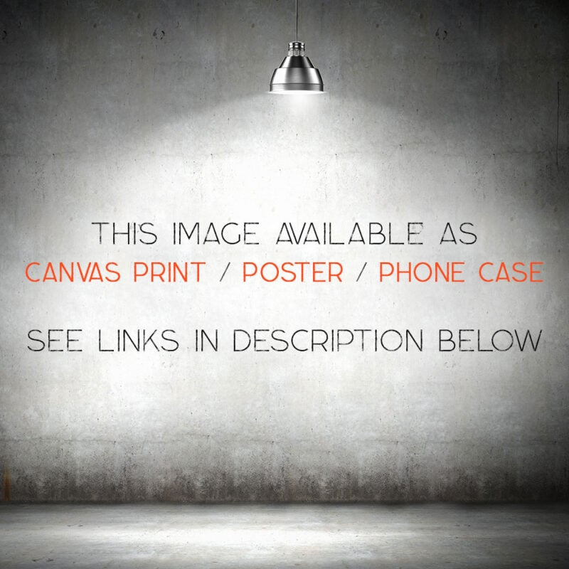 image available as phone case canvas print and poster
